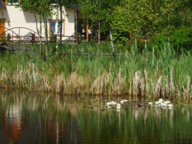 Agroturystyka Koziołkowo - pokoje, domki, camping | zdjęcie nr 3