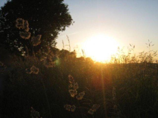 Agroturystyka Winnica za wsią | zdjęcie nr 2
