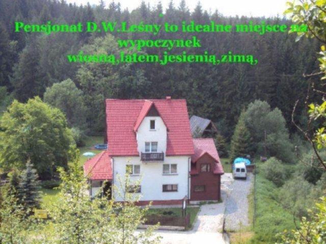 D.W.Leśny | zdjęcie nr 1