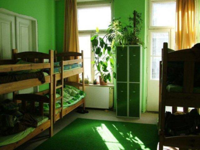 Hostel Zielone Mazowsze | zdjęcie nr 1