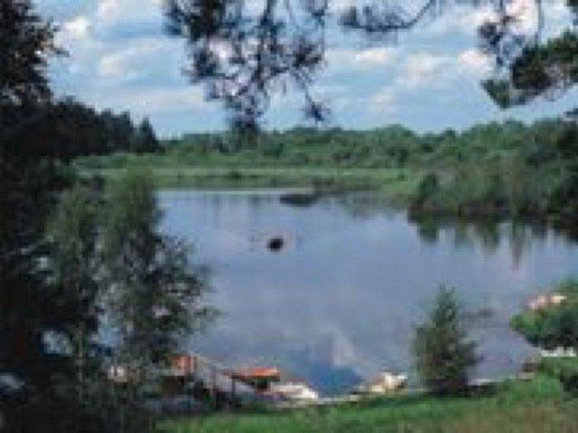 Mazury, las, jezioro | zdjęcie nr 1