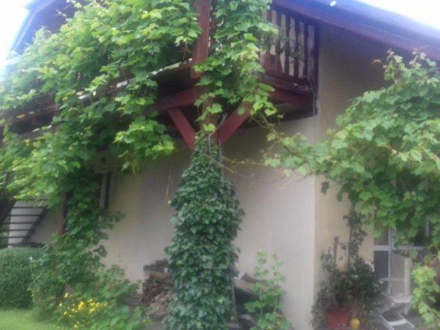 Pokoje gościnne Bobowicko   zdjęcie nr 3