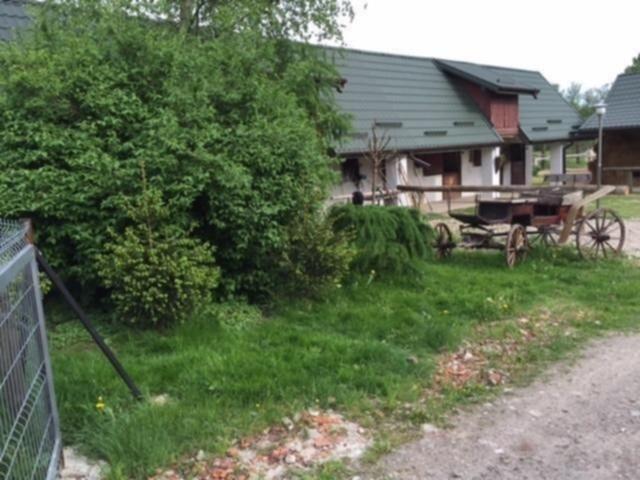 Stajnia Dżygitówka - Agroturystyka | zdjęcie nr 2